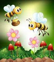 Biene und Honig vektor