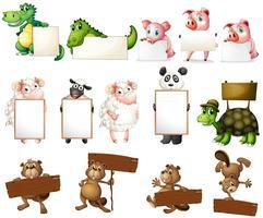 Tiere und Zeichen