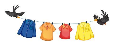 Vier verschiedene Kleider hängen mit Vögeln