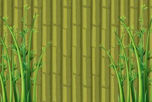 Bambus Hintergrund vektor