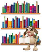 En hund som håller en bok framför bokhyllorna