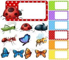 Etikettenvorlage mit verschiedenen Insektenarten vektor