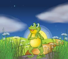 Ein Frosch, der den hellen Stern betrachtet vektor