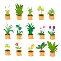växtinsamling vektor
