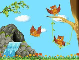 Drei Eulen fliegen am Wasserfall