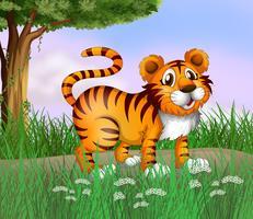 En tiger och en vacker natur