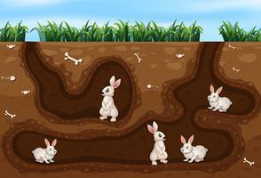 Kaninfamilj som bor i hålet vektor