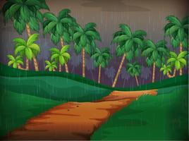 Skogsplats på regnig dag
