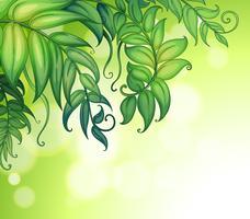 Ein Spezialpapier mit grünen Blättern