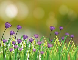 Ett brevpapper med en trädgård av violetta blommor