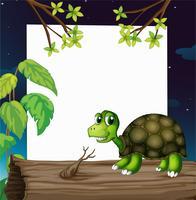 En sköldpadda ovanför träet med en tom bräda på baksidan