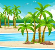Strandutsikt på dagtid