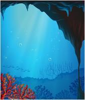Korallen in der Meereshöhle vektor