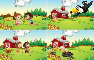 Farm scener