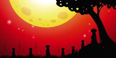 Silhouettieren Sie Szene mit meerkats und rotem Himmel vektor