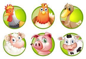 Nutztiere auf grünen Abzeichen vektor