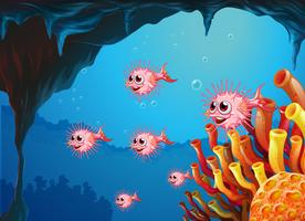 En skola med pufferfiskar inuti havsgrottan