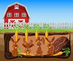 kanin som lever underjordisk bondgård vektor
