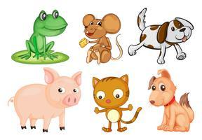 Verschiedene Arten von Landtieren
