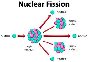 Diagram som visar kärnfission vektor