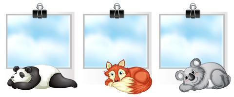 Vorlage mit drei Fahnen mit niedlichen Tieren vektor