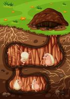 Eine Igelfamilie, die im Untergrund lebt