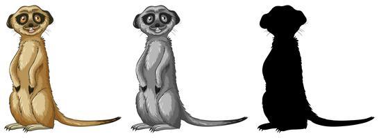 Set Meerkat Zeichentrickfigur vektor