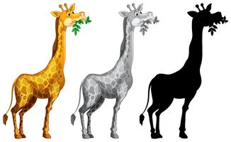 Set av giraff karaktär vektor