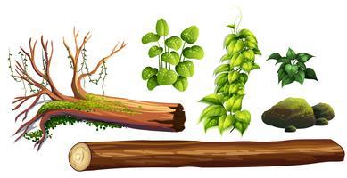 Eine Gruppe von Waldelementen