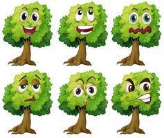 Bäume mit Gesicht