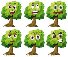 Träd med ansikte