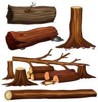 En uppsättning trädträ