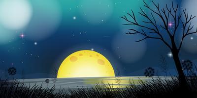 Nattplats med måne och sjö