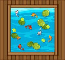 Eine Draufsicht des Fischteichs