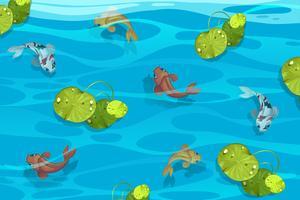 Många koi fiskar i poolen vektor