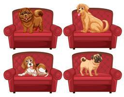 Hunde auf der Couch vektor