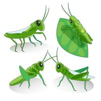gräshoppa karaktär vektor karaktärsdesign