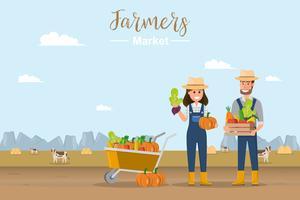 Gårdsbutik. Lokal marknad. Försäljning av frukt och grönsaker.