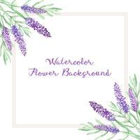 Aquarell Lavendel Blumen Hintergrund vektor