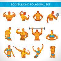 Bodybuilding-polygonale Ikonen eingestellt