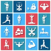 Bodybuilding-Ikonen eingestellt