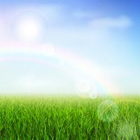 grönt fält vektor