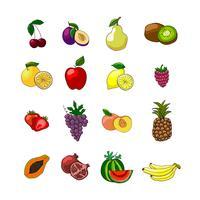 Frukt ikoner uppsättning vektor