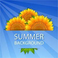 Sommer Sonnenblumen Hintergrund vektor