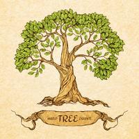 Grönt träd med plats för text vektor