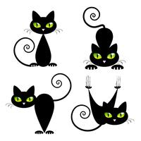 Schwarze Katze mit grünen Augen