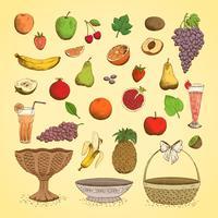 Sats av saftiga färska frukter vektor