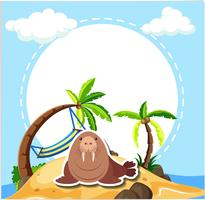 Havslion på stranden
