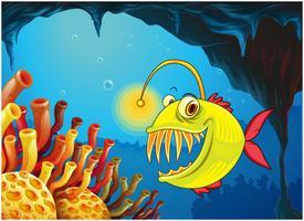 En grotta med en piranha