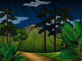 Bakgrundsscen med träd i skogen